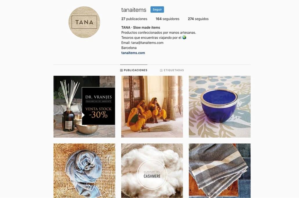 Diseño web. Isabel Torres. Tana items